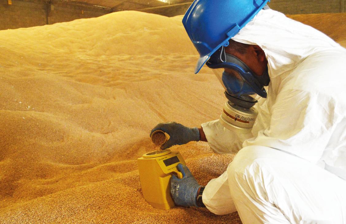 Control de plagas en grano almacenado