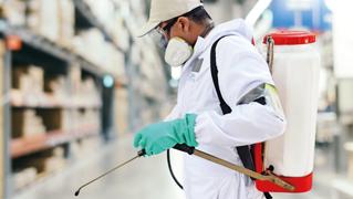 Servicios control de plagas